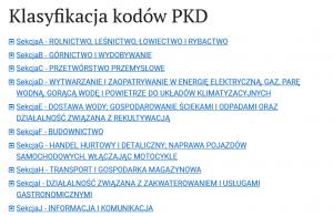 kody PKD - pomysł na własny biznes - kody PKD
