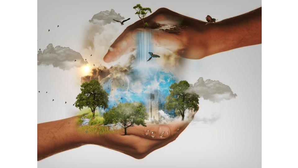 firma sprzątająca ekologia